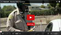 Video : The traffic ticket you won't mind getting